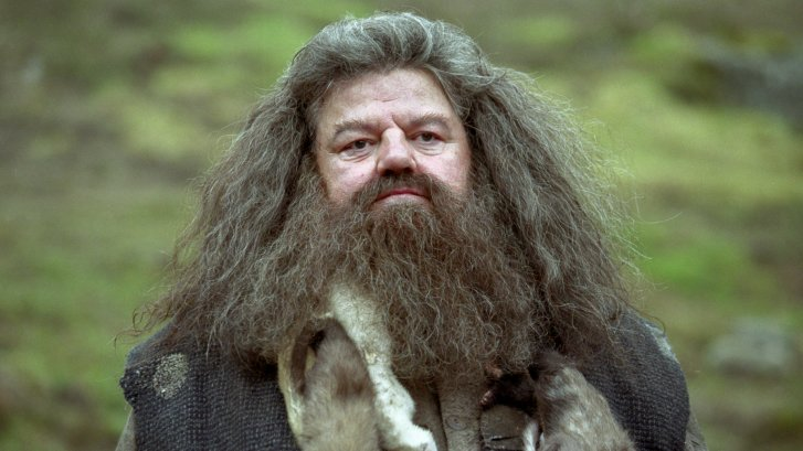 http://www.harry-potter.net.pl/images/articles/hagrid6.jpg
