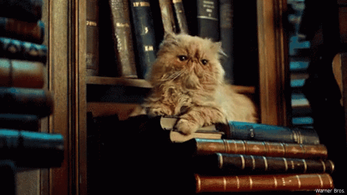 http://www.harry-potter.net.pl/images/articles/literarycats.png