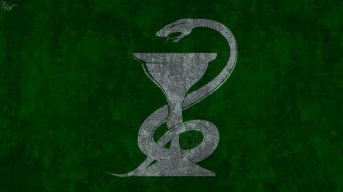 hogwarts_house_wallpaper_slytherin_by_theladyavatar-d5eyd9i.jpg